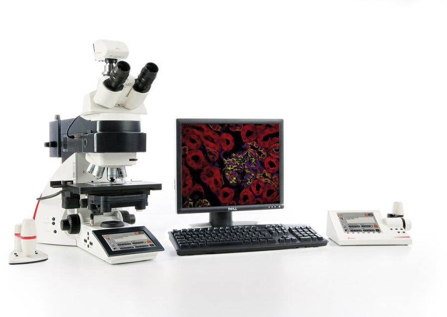 Digital camera / for laboratory microscopes / CCD / cooled 2 Mpx | DFC345 FX Leica Microsystems