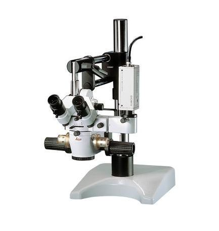 Operating microscope (surgical microscopy) / multipurpose / tabletop M651 MSD Leica Microsystems