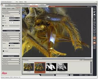Analysis software / for archiving / viewing / medical LAS Montage Leica Microsystems