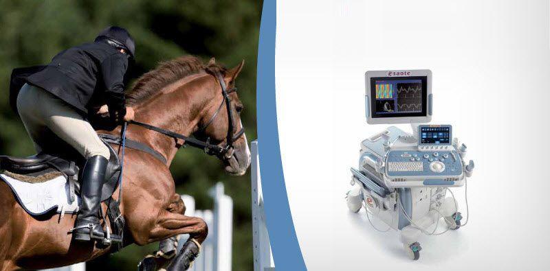 Veterinary ultrasound system / on platform MyLab™Twice VET ESAOTE