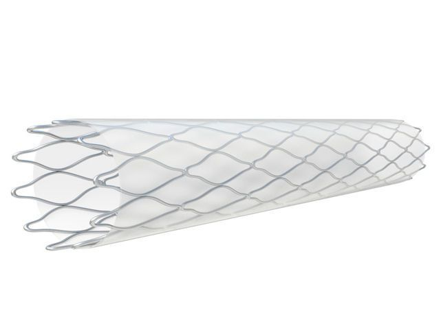 Peripheral stent / cobalt chromium Silene™ InSitu Technologies