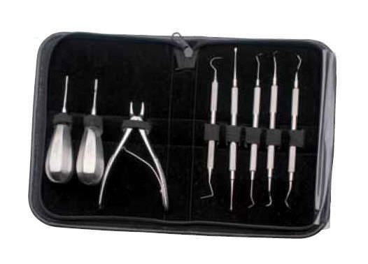 Veterinary periodontal instrument kit D2000 iM3