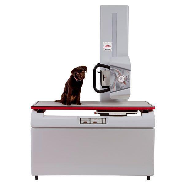 Veterinary X-ray radiology system InnoVet™ Versa InnoVet