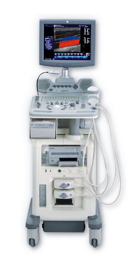 Ultrasound system / on platform / for multipurpose ultrasound imaging LOGIQ® P5 GE Healthcare