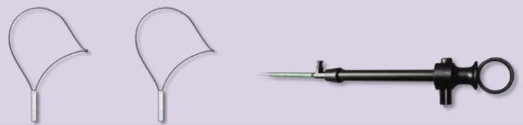 Polypectomy loop Endo-Flex