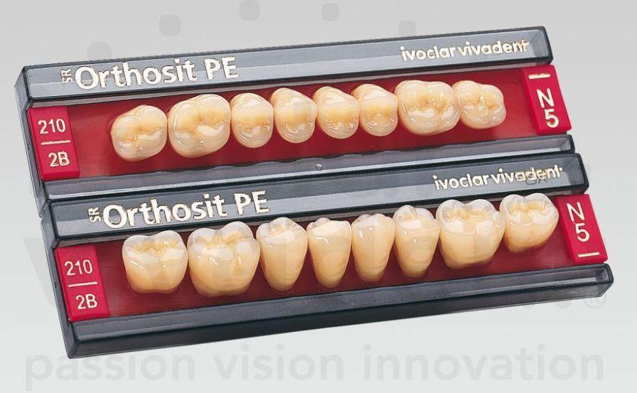Resin dental prosthesis SR Orthosit PE Ivoclar Vivadent