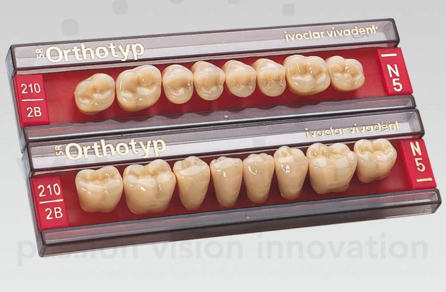 Resin dental prosthesis SR Orthotyp Ivoclar Vivadent