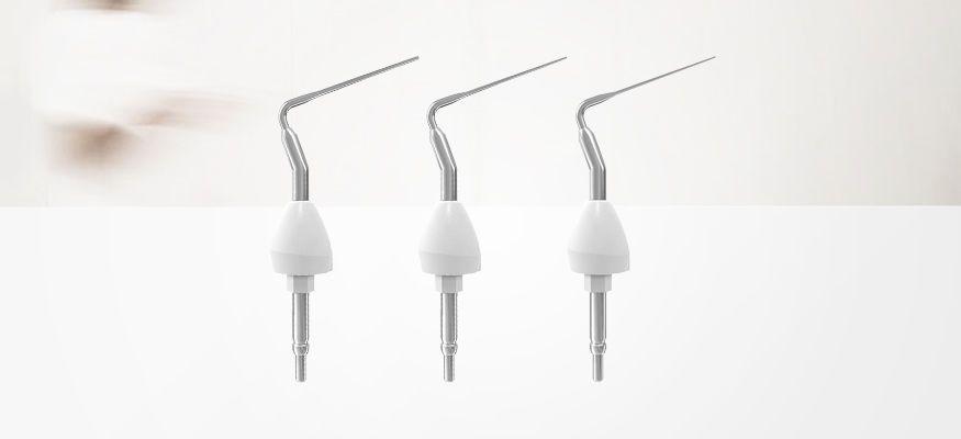 Tip endodontic plugger / nickel titanium Niti Nikinc Dental