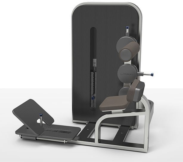 Weight training station (weight training) / back extension / traditional milcanic milon industries