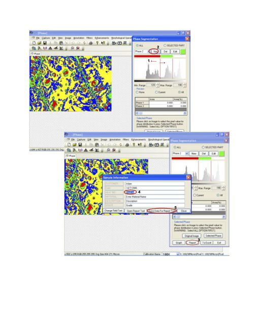 Viewing software / analysis / for archiving / medical Magnus Pro Magnus Analytics