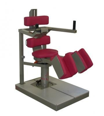 Weight training station (weight training) / rotary torso / rehabilitation 5340 Rehab HUR