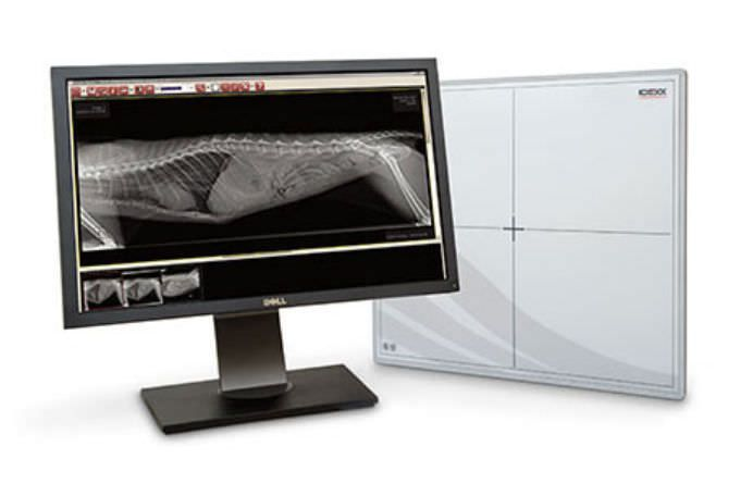 Digital medical radiography acquisition system / for veterinary radiography / fixed IDEXX I-Vision DR® Idexx Laboratories