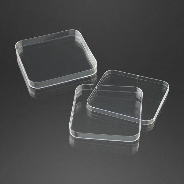 Square Petri dish 120 mm | 29080 F.L. Medical