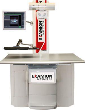 Digital veterinary X-ray radiology system / whole-body veterinary X-ray / with table X-R STATIC Maxivet Examion