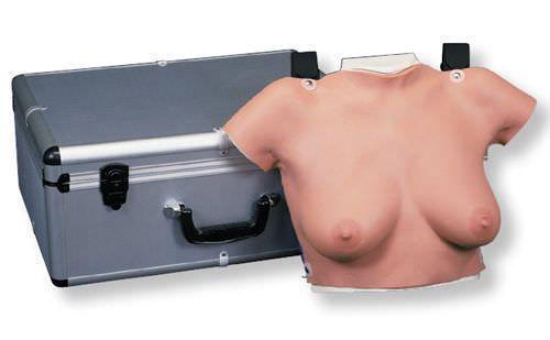 Breast massage anatomical model L50 3B Scientific