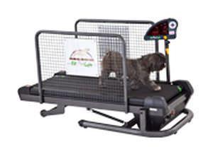 Dog treadmill SMALL Fit Fur Life