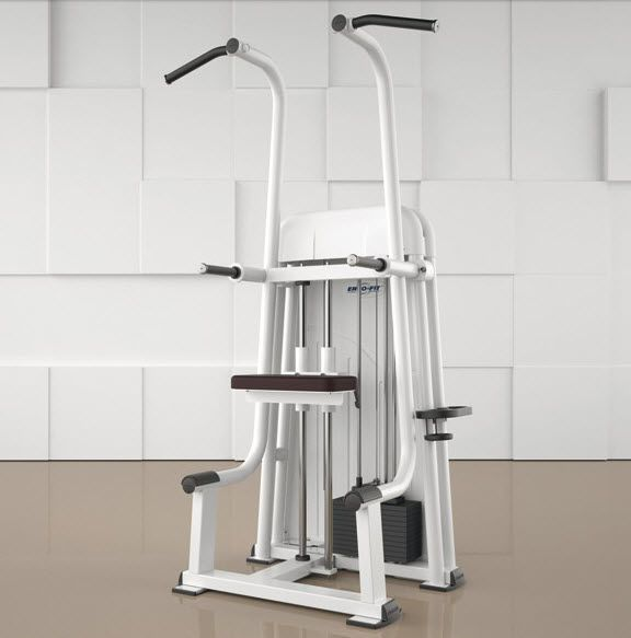 Weight training station (weight training) / lat pulldown / seated dips / rehabilitation PULL UP DIP 4000 ERGO-FIT