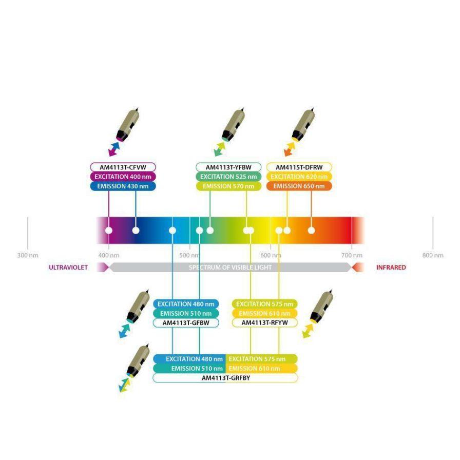 Biology microscope / digital / fluorescence / UV AM4113T-CFVW Dino-Lite Europe