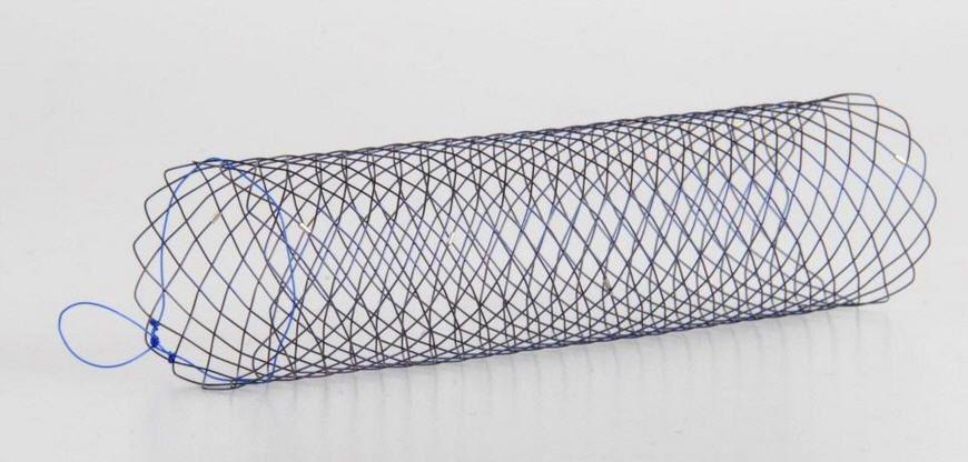 Duodenal stent SX-ELLA ENTERELLA ELLA-CS