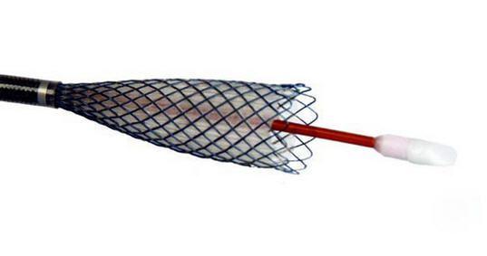 Biliary stent / nitinol NITINELLA PLUS ELLA-CS