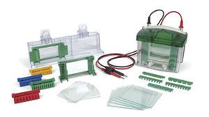Vertical electrophoresis system 165-8000 Bio-Rad