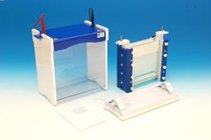 Electrophoresis chamber PHERO-vert 2020-E BIOTEC-FISCHER