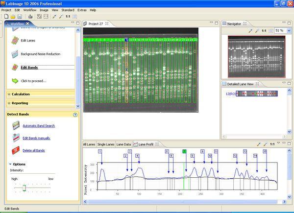 Analysis software / laboratory Labimage 1D Standard BIOTEC-FISCHER