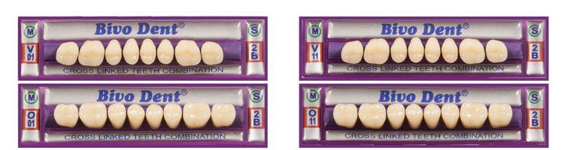 Resin dental prosthesis / molar Bivodent