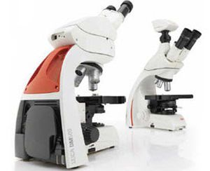 Archiving software / viewing / analysis / medical Clemex Vision PE Clemex