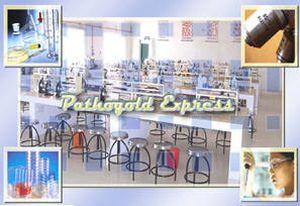 Data management software / medical / laboratory PathoGold Express Birlamedisoft