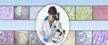 Data management software / medical / laboratory Histopath-lab Birlamedisoft