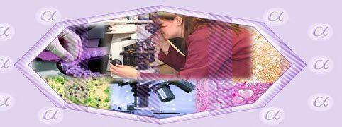 Data management software / medical / for hospitals / laboratory PathoGold Alpha Birlamedisoft