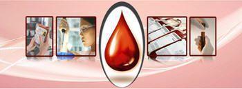 Management software / medical / for blood transfusion center Bloodbank Manager Prime Birlamedisoft