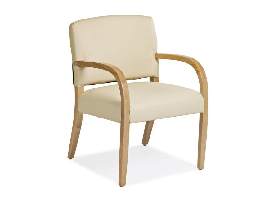 Chair with armrests Associate Cabot Wrenn Care