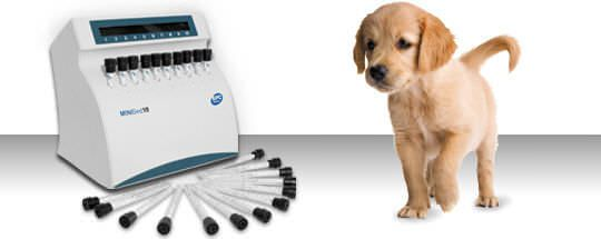 Automatic ESR analyzer / veterinary Minised New Vet BPC BioSed
