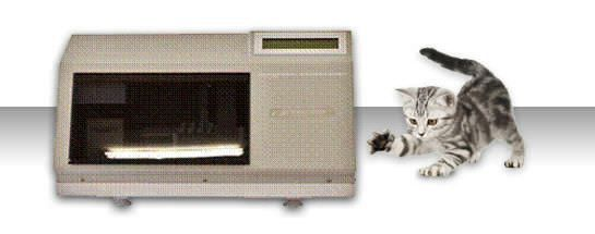 Compact electrophoresis system / veterinary Simply PHOR 8 Vet BPC BioSed