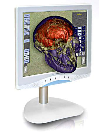 High-definition display / 3D / LCD / medical Dynamaxx Ampronix