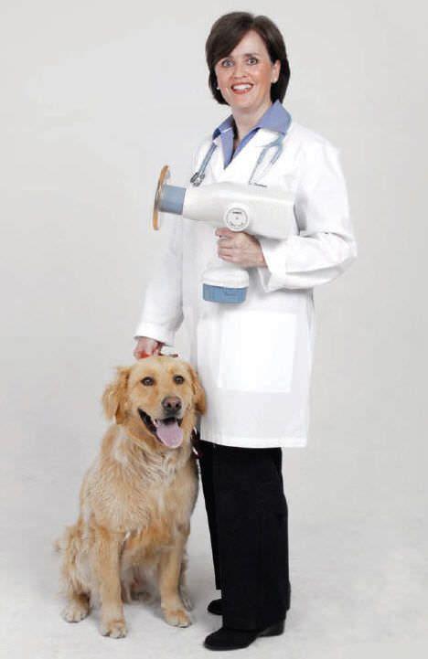 Dental x-ray generator (dental radiology) / digital / handheld / veterinary NOMAD eXaminer Aribex Inc.