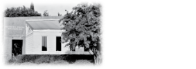 Aesthetic Dental Innovations logo