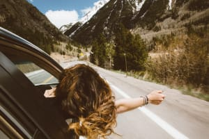 A woman leaning out a car window on a roadtrip