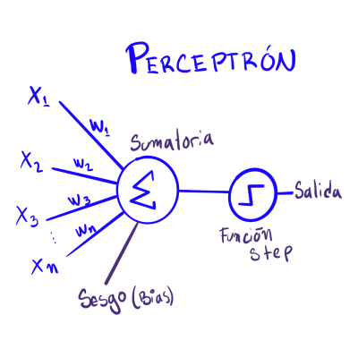 Representación gráfica de un perceptrón
