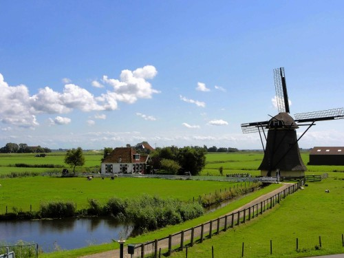 Netherlands Windmill and field