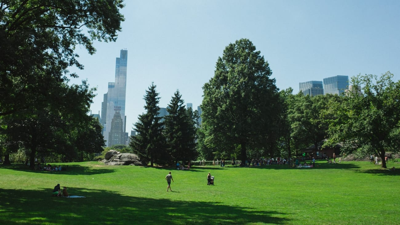 10 things to do in Central Park in New York
