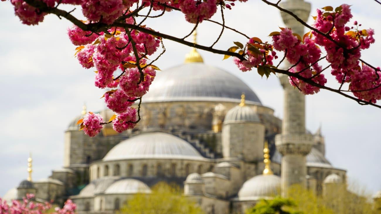 Las mejores actividades en Estambul