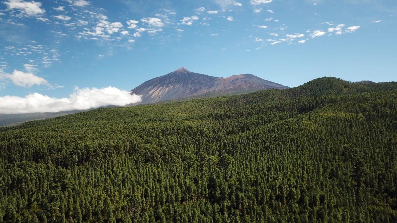Cómo subir al Teide en Tenerife