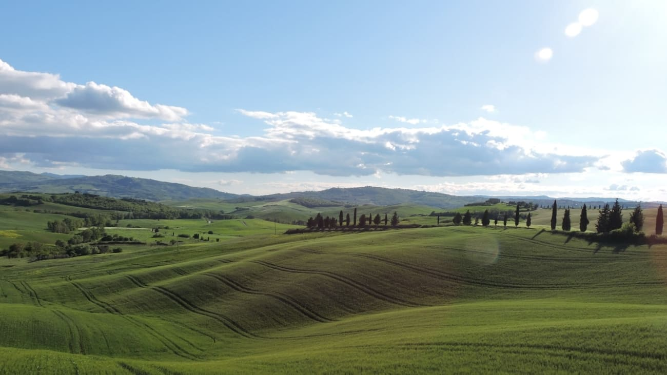 Tours and Daytrips from Florence
