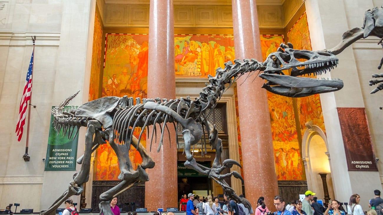Entradas Museo de Historia Natural en Nueva York