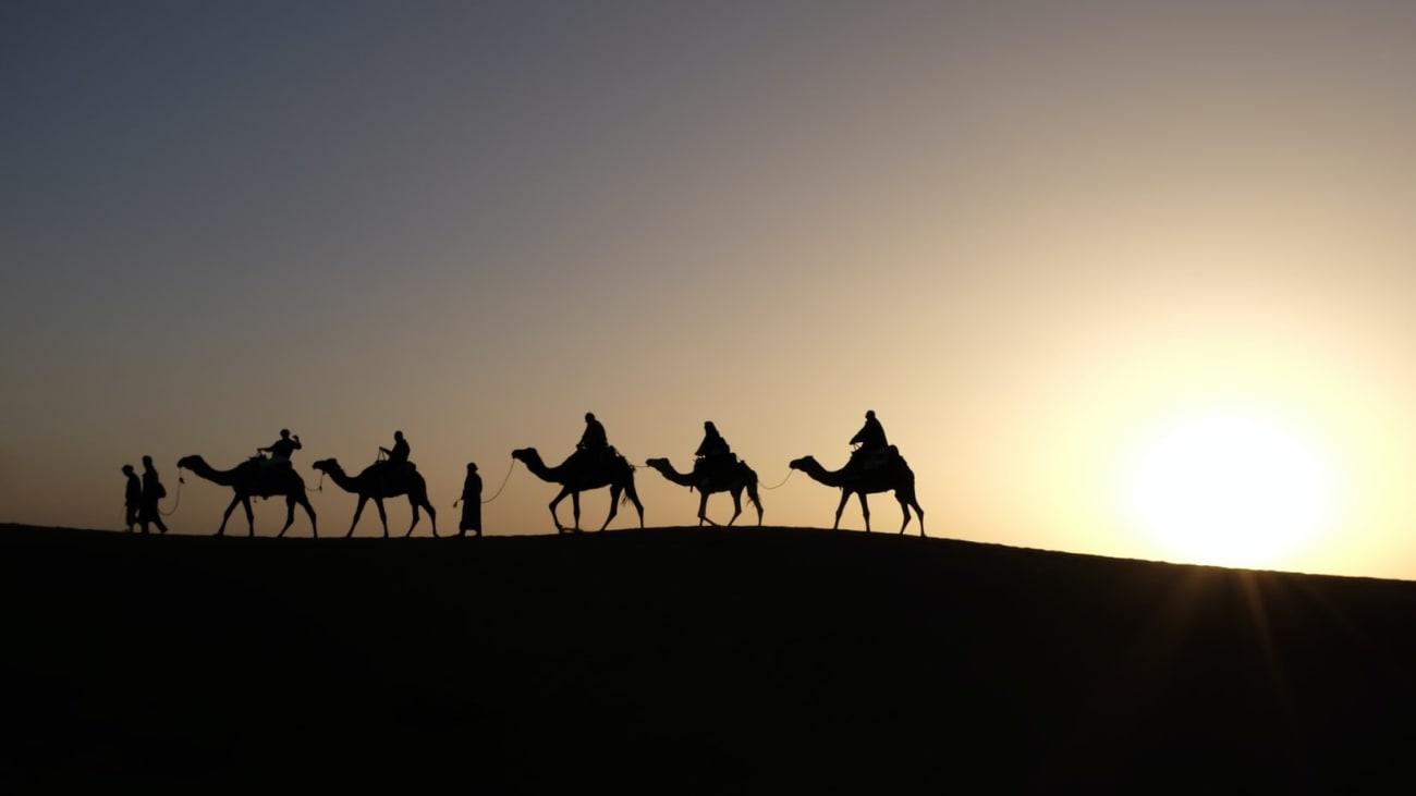 Paseos en Camello en Marrakech