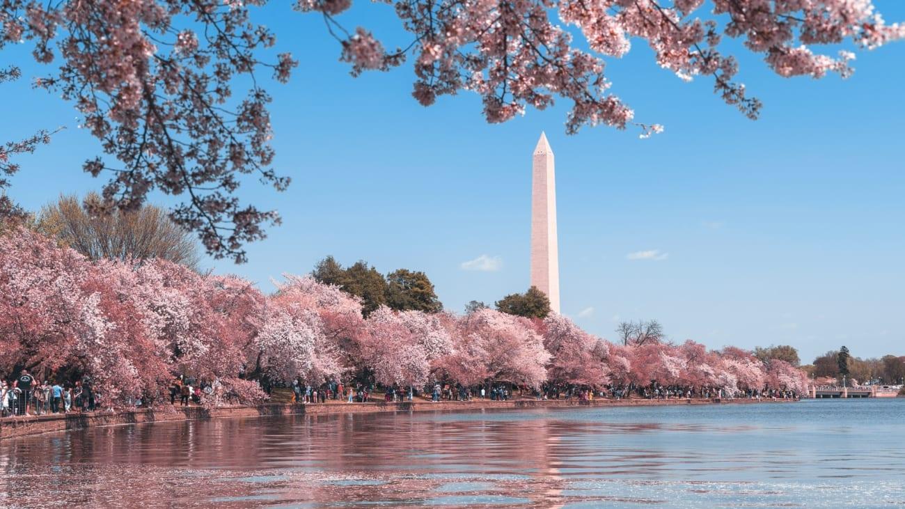 Melhores coisas para se fazer em Washington DC