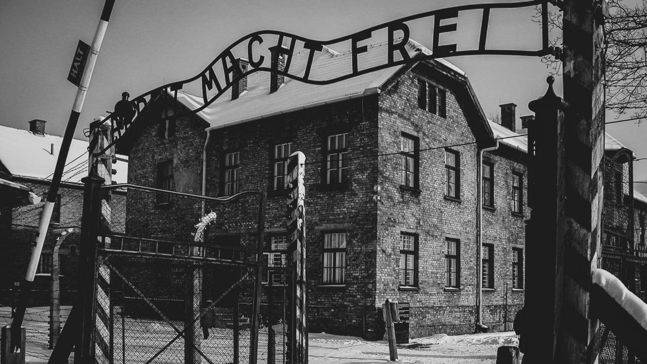 Auschwitz and Wieliczka Salt Mine Day Trips from Krakow